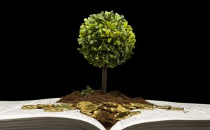 Investing with book and plant